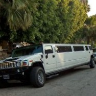 Bijzondere limousines